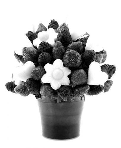 chutna-kytica-800x654-blackwhite
